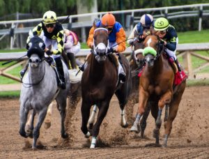 chevaux de course avec jockey